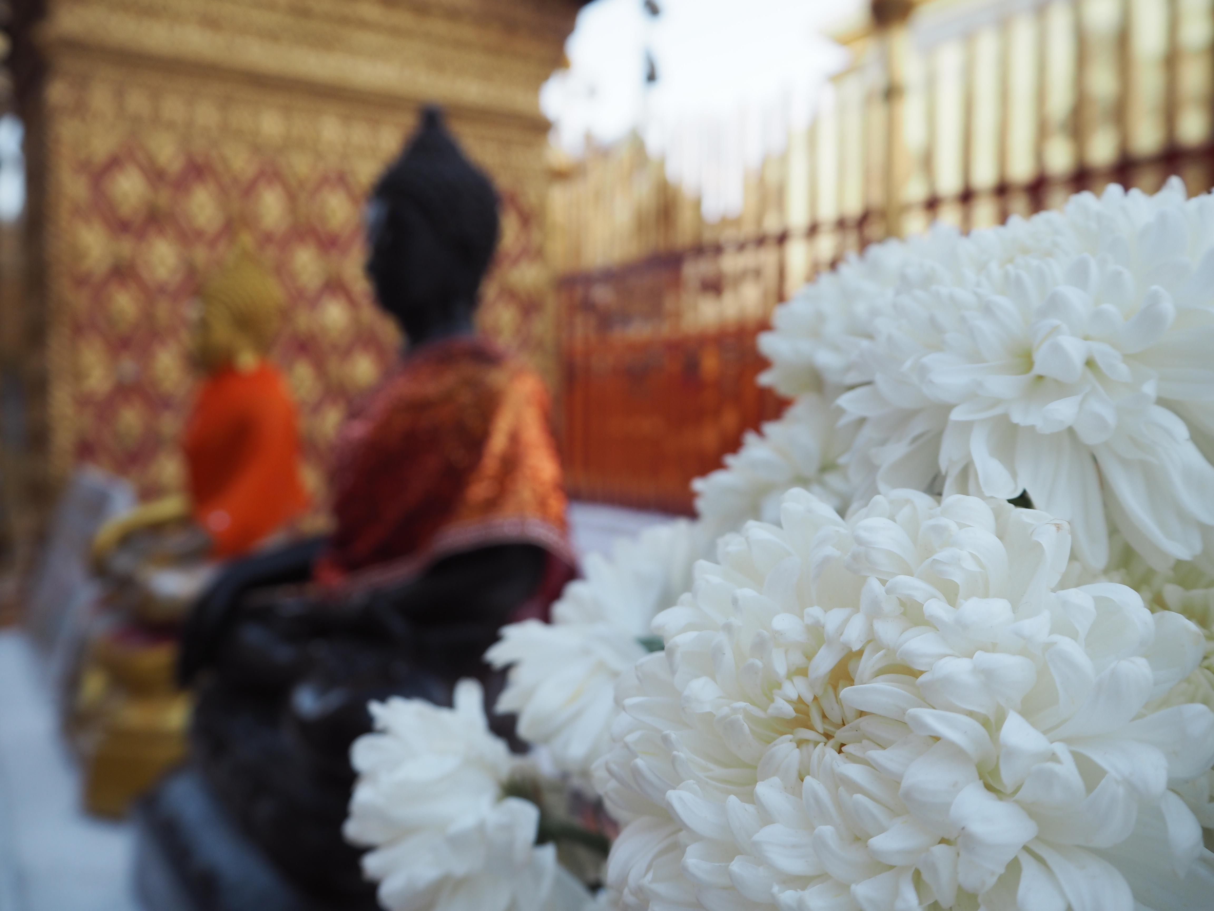 Reisdagboek Thailand #2 - Ayutthaya, Lampang & Chiang Mai - By ...