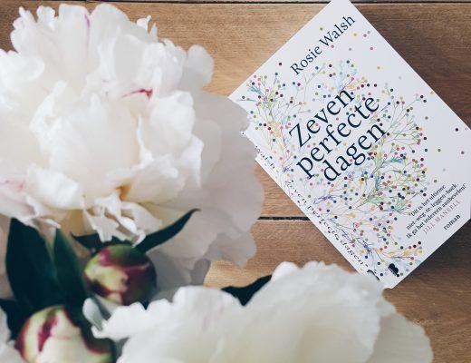 Zeven perfecte dagen boek recensie