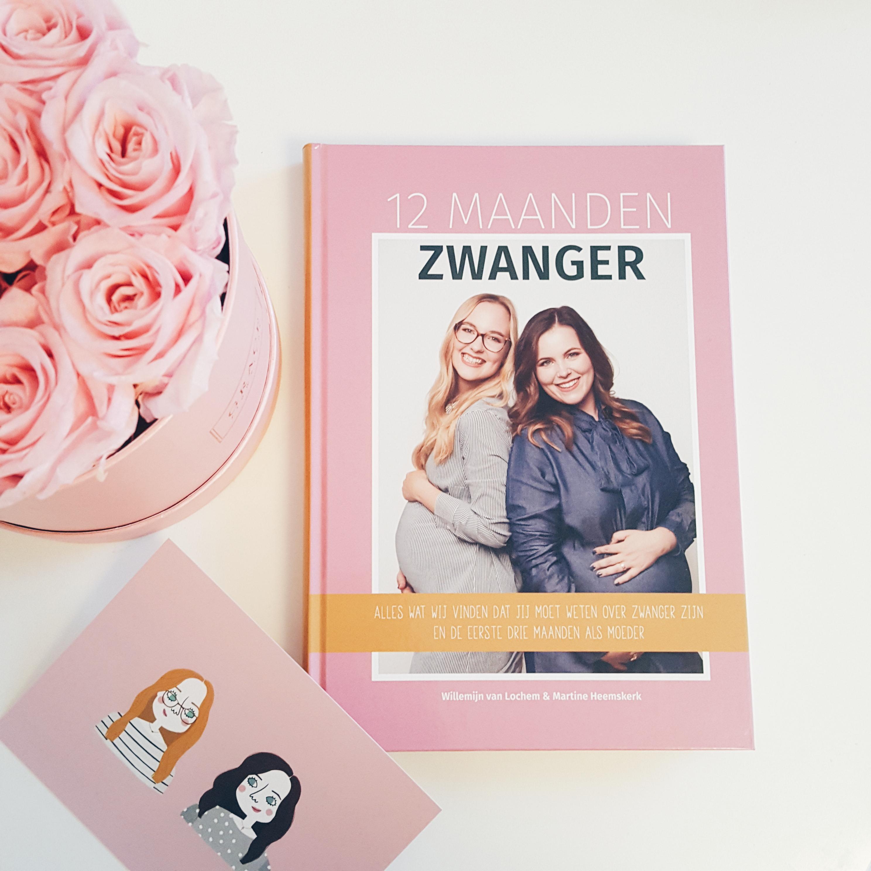 12 maanden zwanger recensie boek wil en tien