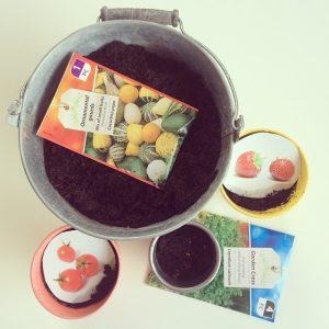 Mijn mini-moestuin en liefde voor schattige plantjes