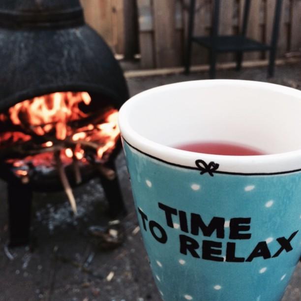Winterproof – Onze tuin is weer klaar voor het najaar!