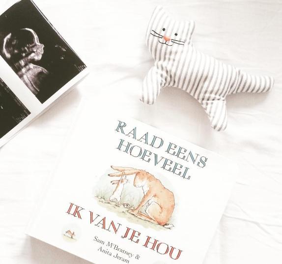 Zwanger week #21 – 20-weken echo, babyshoppen én Antwerpen