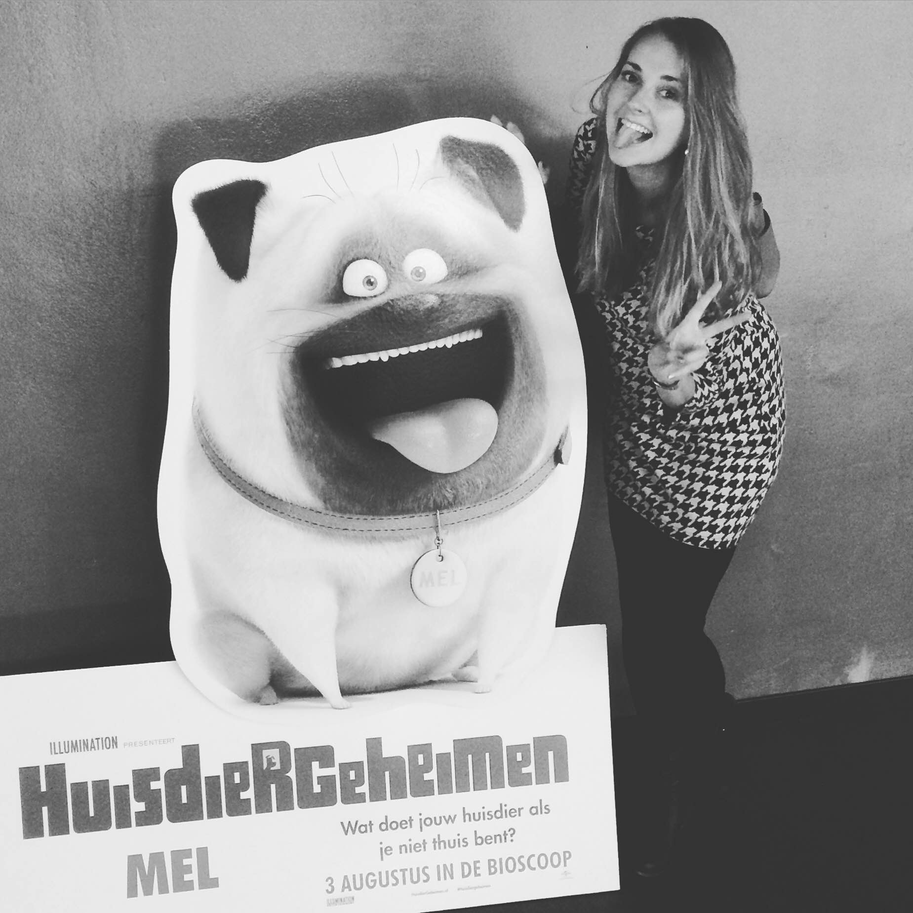 Huisdiergeheimen – The Secret Life of Pets