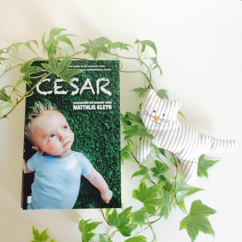 Cesar door Matthijs Kleyn