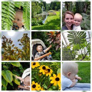 Hotspot – Botanische Tuinen Universiteit Utrecht