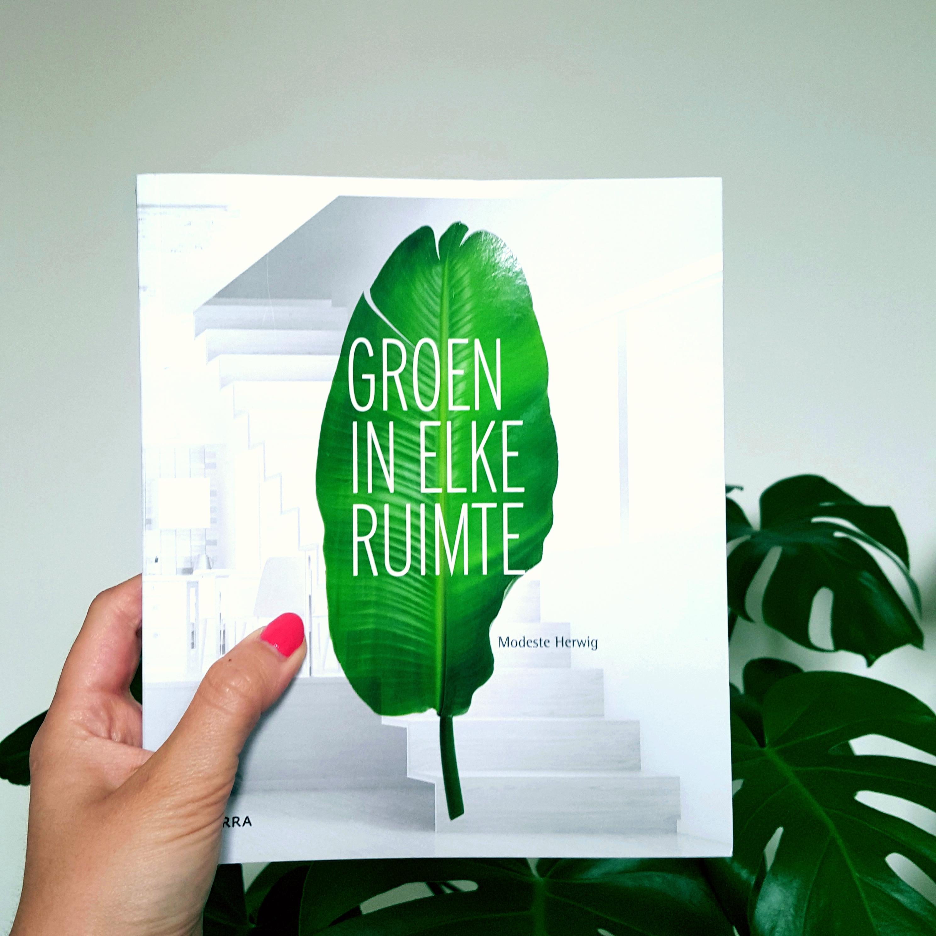 Groen in elke ruimte door Modeste Herwig