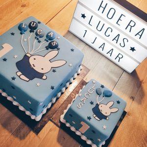 Het eerste verjaardagsfeest van Lucas
