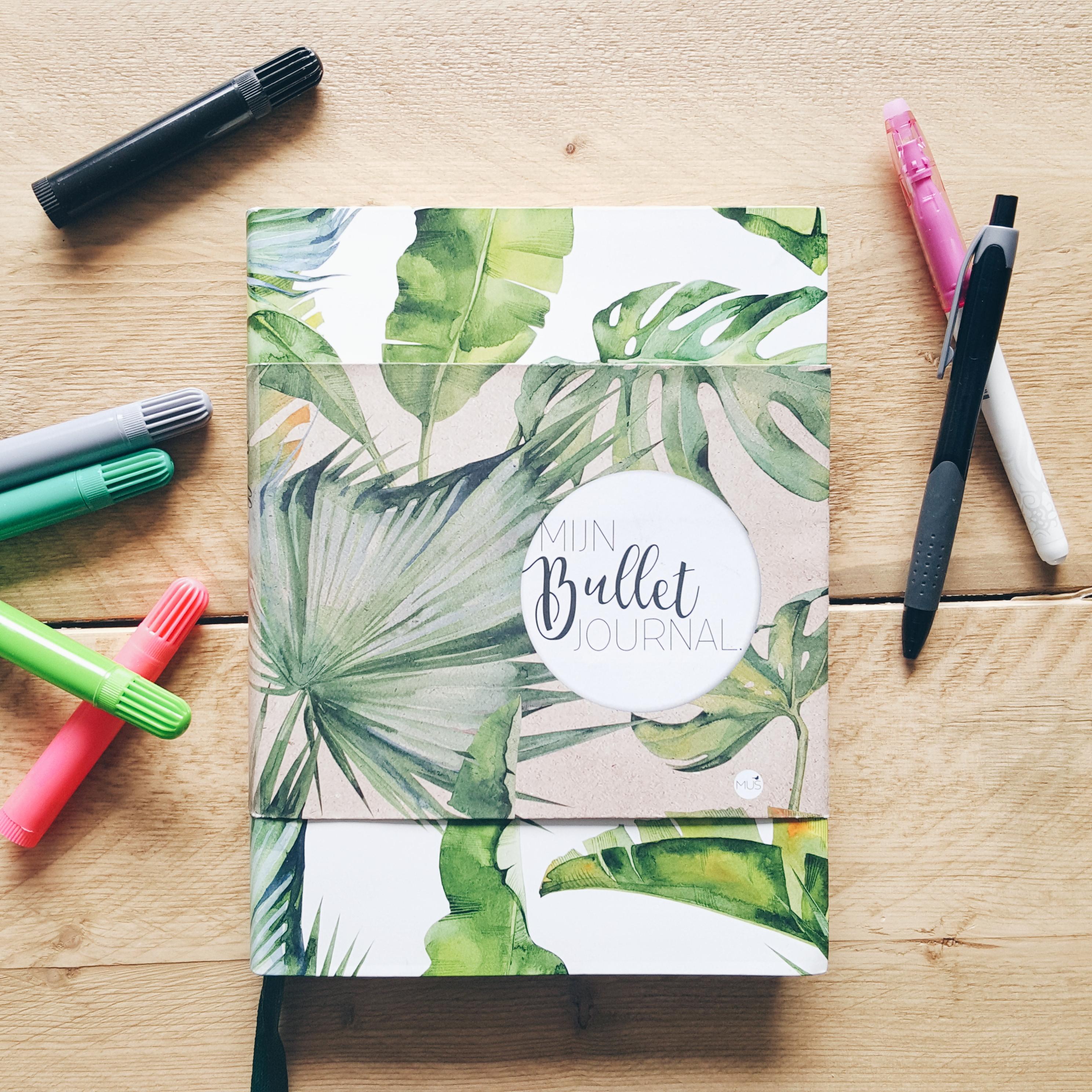 Hoe ik mijn bullet journal dagelijks gebruik