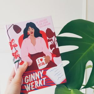 Boek Ginny werkt – Hoe vind je jouw droombaan?